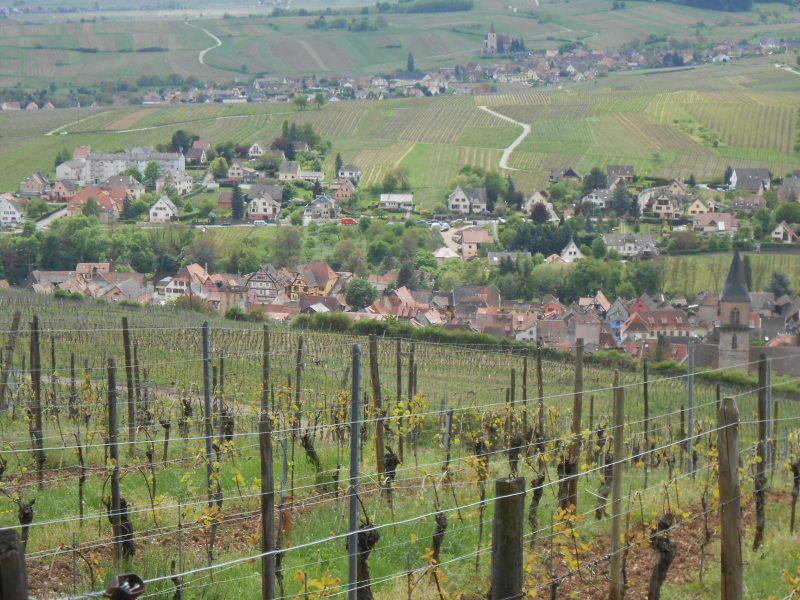 Alsace Pict Day4