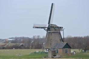 WE Rando: Texel, l'île aux Mille Tulipes